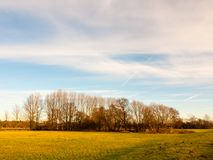 Linea di albero vuota dello spazio aperto del paesaggio del paese cielo Fotografia Stock