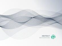 Linea di colore grigia astratta elemento dell'onda per il fondo di progettazione illustrazione di stock