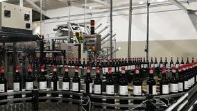Linea di imbottigliamento del vino nel moto stock footage