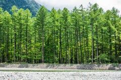Linea di legno il giorno nuvoloso Immagini Stock Libere da Diritti