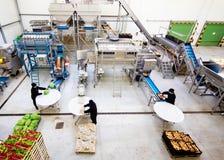 Linea di produzione in magazzino immagine stock