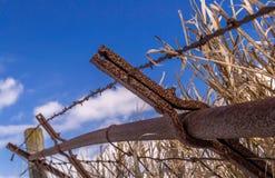 Linea di recinzione arrugginita Fotografia Stock Libera da Diritti