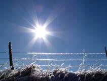Linea di recinzione di inverno Fotografia Stock Libera da Diritti