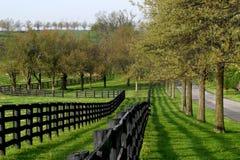 Linea di recinzione e vicolo Fotografia Stock