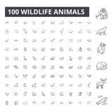 Linea editabile icone, un insieme di 100 vettori, raccolta degli animali della fauna selvatica Illustrazioni nere del profilo deg illustrazione di stock