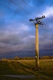 Linea elettrica fotografie stock libere da diritti