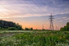 Linea elettrica ad alta tensione nel prato del fiore Fotografia Stock