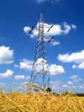 Linea elettrica e giacimento del riso Fotografia Stock