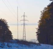 Linea elettrica ed albero della TV Immagini Stock
