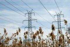 Linea elettrica torrette e giunco Fotografia Stock