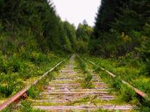 Linea ferroviaria in foresta canadese Fotografia Stock Libera da Diritti