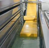 Linea gialla di produzione di formaggio per l'industria casearia Fotografie Stock