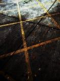 Linea gialla su terra Immagini Stock