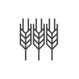 Linea icona, segno di vettore del profilo, pittogramma lineare dell'orecchio del grano di stile isolato su bianco Simbolo, illust royalty illustrazione gratis