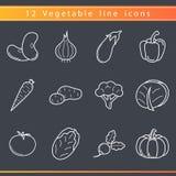 Linea icone delle verdure Immagini Stock Libere da Diritti
