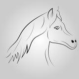 Linea il nero del cavallo Immagini Stock