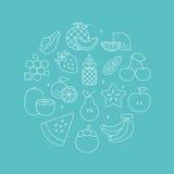 Linea insieme di frutti del cerchio dell'icona Immagine Stock