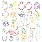 Linea insieme operato grafico dell'alimento di vettore di arte di frutta e della verdura Fotografia Stock Libera da Diritti