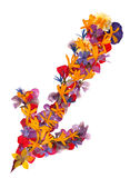Linea isolata frecce multicolori, raccolta del applicat degli elementi Immagine Stock Libera da Diritti