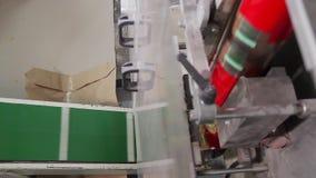Linea per pasta d'imballaggio nei sacchetti di plastica video d archivio