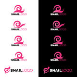 Linea rosa vettore della lumaca di logo su fondo bianco e nero Immagine Stock