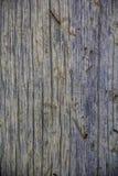 Linea tratteggiata Fotografia Stock Libera da Diritti