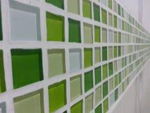 Linea verde di Mosè Immagini Stock