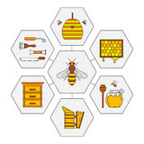 Linear beekeeping icons. Set of linear icons beekeeping.  Vector illustration Stock Images
