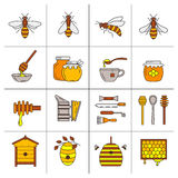 Linear beekeeping icons. Set of linear icons beekeeping.  Vector illustration Royalty Free Stock Photography