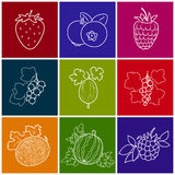Linear Berry Icons. Fruit Berry Icons Melon, Strawberry,Raspberries and Blueberries,Gooseberry with Blackcurrant, Watermelon, Redcurrant and Blackberry on Stock Photo