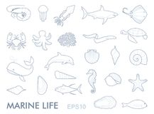Marine life contour icons. Linear contour icons inhabitants of the underwater world Stock Photos