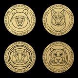 Linear design head of tiger, lion, wolf, bear. Stock Photos