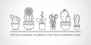 Linear design, potted flowers. elements of a corporate logo. Vector Stock Image