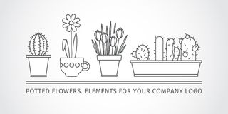 Linear design, potted flowers. elements of a corporate logo. vector set Stock Photo