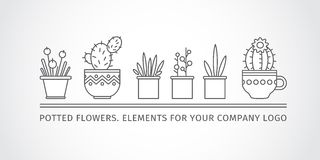 Linear design, potted flowers. elements of a corporate logo. vector set Stock Photography