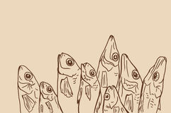 Linear drawing dried fish Stock Image