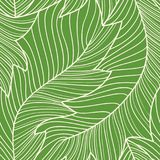 Linear engraving banana leaves seamless pattern. Repeating floral pattern royalty free illustration