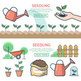 Linear Flat plants ground, sprout hand vector Seed. Linear Flat can watering plants on ground, sprout in hand vector illustration set. Seedling and gardening Stock Photos