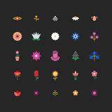Linear flower floral vector icons with bright colors Stock Images