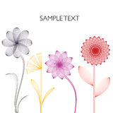 Linear flowers background Royalty Free Stock Photos