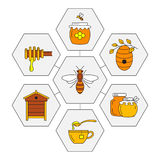 Linear honey icons. Set of linear icons honey. Vector illustration Royalty Free Stock Images