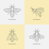 Linear icons bee. Set of linear icons bee. Vector illustration Stock Photos