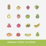 Linear icons of fruits. Royalty Free Stock Images