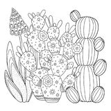 Vector coloring page. Linear image on white background cute cactus for page for coloring book. Contour image of cactus scribble fo. Linear image on white Royalty Free Stock Photos