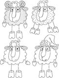 Linear option of drawing a sheep and sheep Royalty Free Stock Images