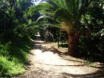 The linear Park in Nicosia is mostly natural soil but some areas are paved Royalty Free Stock Photo