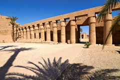 Linear perspective of columns and sphinxes. Linear perspective of columns and ram-headed sphinxes, Karnak temple, Egypt Royalty Free Stock Photography
