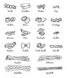 Linear pictures of classical italian food. Different types of pasta vector illustration