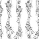 Linear seamless pattern - lotus flower. Stock Images