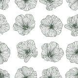 Linear seamless pattern - mallow flowers Stock Photo